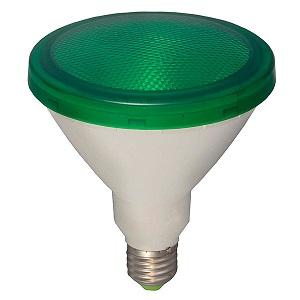 BELL 05651 LED ES PAR38 15W 240V Green