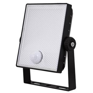 ESP NH10BS Floodlight LED   Snsr 10W Blk